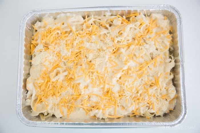 Chicken-tetrazzini