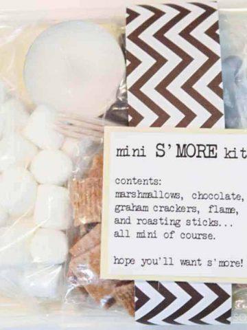mini-s'mores-kit-smores-recipe