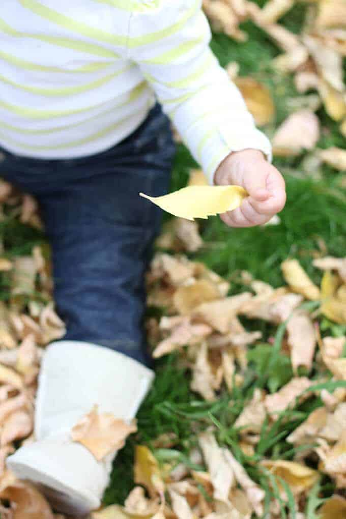 evelyn playing in leaves
