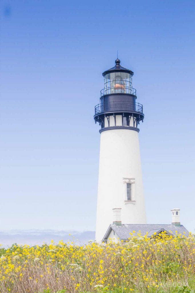 yaquina-head-lighthouse-oregon-coast-with-kids