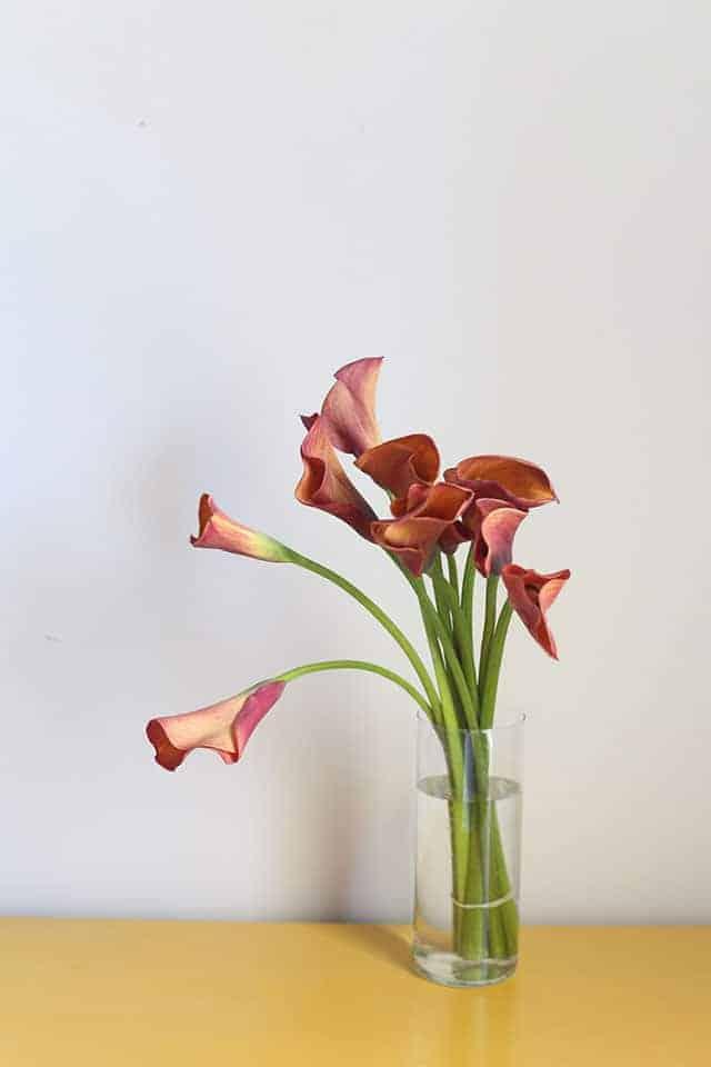 fresh-cut-flowers