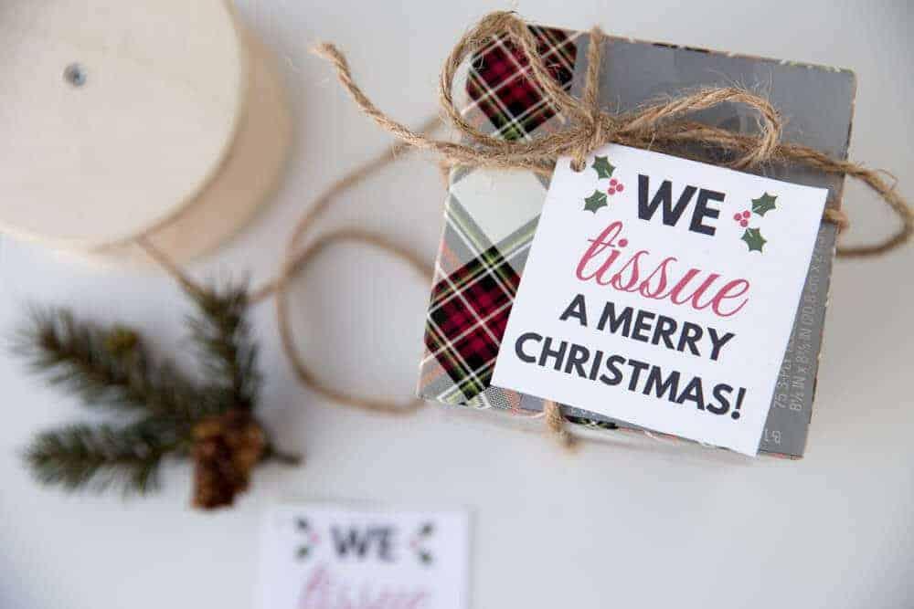 Cheap and Easy-Christmas-Neighbor-GiftIdea